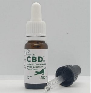 CBD CHAT (FULL SPECTRUM) 2,5 %